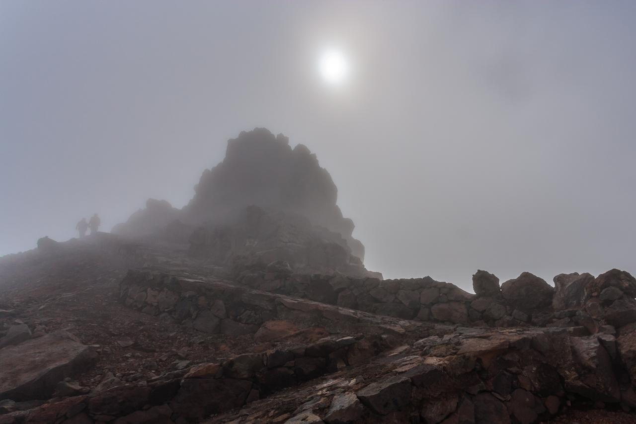 De entre la niebla
